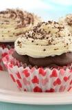 Χαμηλής περιεκτικότητας σε λιπαρά σοκολάτα cupcakes Στοκ Εικόνα