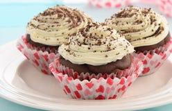 Χαμηλής περιεκτικότητας σε λιπαρά σοκολάτα cupcakes Στοκ εικόνες με δικαίωμα ελεύθερης χρήσης