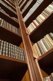 Χαμηλή γωνία ραφιών βιβλιοθήκης - διαγώνια άποψη Στοκ φωτογραφία με δικαίωμα ελεύθερης χρήσης