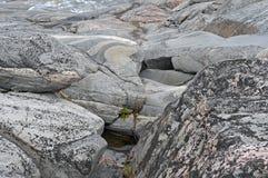 χαμηλή παλίρροια επίδρασης Στοκ Εικόνα