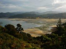 Χαμηλή παλίρροια στην ακτή του Ειρηνικού Ωκεανού, Νέα Ζηλανδία στοκ εικόνα