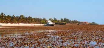 Χαμηλή παλίρροια στην ωκεάνια παραλία επιφυλακών στοκ εικόνες