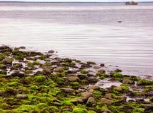 Χαμηλή παλίρροια στο ασημένιο κρατικό πάρκο άμμων σε Milford Στοκ Εικόνες