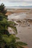 Χαμηλή παλίρροια στο εθνικό πάρκο του Abel Tasman Στοκ Φωτογραφία