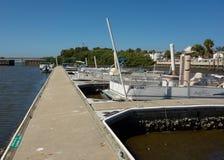 Χαμηλή παλίρροια στο κλειδί κέδρων, Φλώριδα Στοκ Εικόνα