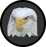 Χαμηλός-πολυ αετός Στοκ Εικόνες