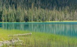 Χαμηλότερη λίμνη Joffre Στοκ Εικόνα