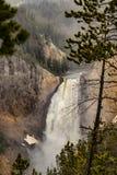 Χαμηλότεροι καταρράκτες Yellowstone στην υδρονέφωση στο εθνικό πάρκο Yellowstone, Ουαϊόμινγκ Στοκ Φωτογραφία