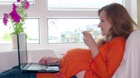 Χαμογελώντας έγκυος γυναίκα με τα αγαθά αγοράς lap-top και πιστωτικών καρτών στο σε απευθείας σύνδεση κατάστημα φιλμ μικρού μήκους