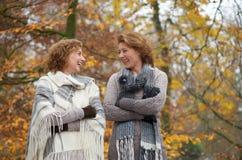 Χαμογελώντας γυναίκες φθινοπώρου Στοκ εικόνα με δικαίωμα ελεύθερης χρήσης