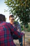 Χαμογελώντας ευτυχείς νέοι θηλυκοί και αρσενικοί αγρότης και γεωπόνος που επιθεωρούν το μπολιασμένο οπωρωφόρο δέντρο σε έναν μεγά στοκ εικόνα