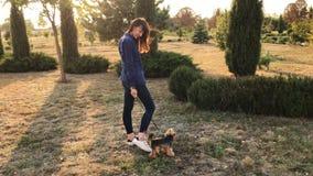 Χαμογελώντας κορίτσι brunette με το τεριέ του Γιορκσάιρ της στο πάρκο στο ηλιοβασίλεμα φιλμ μικρού μήκους