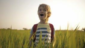 Χαμογελώντας παιδί στην πράσινη χλόη του τομέα ρυζιού στο σπίτι τρόπων από το σχολείο απόθεμα βίντεο