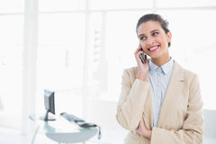 Χαμογελώντας έξυπνη καφετιά μαλλιαρή επιχειρηματίας που κάνει ένα τηλεφώνημα Στοκ φωτογραφίες με δικαίωμα ελεύθερης χρήσης