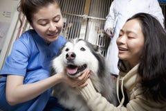 Χαμογελώντας γυναίκα με το σκυλί και τον κτηνίατρο κατοικίδιων ζώων Στοκ Εικόνες