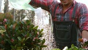 Χαμογελώντας εγκαταστάσεις ποτίσματος ατόμων κηπουρών απόθεμα βίντεο
