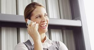 Χαμογελώντας επιχειρηματίας που έχει ένα τηλεφώνημα φιλμ μικρού μήκους