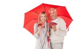 Χαμογελώντας ζεύγος που παρουσιάζει φύλλα φθινοπώρου κάτω από την ομπρέλα Στοκ Εικόνες