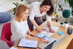 Χαμογελώντας θηλυκά που εργάζονται με τον κατάλογο της παλέτας και του lap-top χρώματος Στοκ Εικόνες