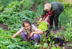 Χαμογελώντας κορίτσι και η γιαγιά της Στοκ φωτογραφία με δικαίωμα ελεύθερης χρήσης