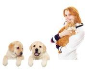 Χαμογελώντας κτηνίατρος και γάτα Στοκ φωτογραφία με δικαίωμα ελεύθερης χρήσης