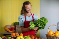 Χαμογελώντας προσωπικό που εξετάζει τα φυλλώδη λαχανικά στο μετρητή στοκ εικόνες