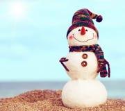 Χαμογελώντας χιονάνθρωπος στην παραλία θάλασσας Στοκ Φωτογραφία