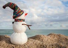 Χαμογελώντας χιονάνθρωπος στην παραλία θάλασσας Στοκ εικόνα με δικαίωμα ελεύθερης χρήσης