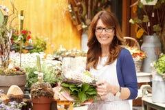 Χαμογελώντας ώριμος ιδιοκτήτης μαγαζιό λουλουδιών μικρών επιχειρήσεων ανθοκόμων γυναικών Στοκ φωτογραφία με δικαίωμα ελεύθερης χρήσης