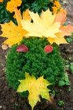 χαμόγελο κήπων Στοκ Εικόνες
