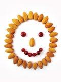 χαμόγελο καρυδιών προσώπ&o στοκ φωτογραφίες με δικαίωμα ελεύθερης χρήσης