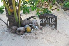 Χαμόγελο καρύδων Στοκ Εικόνες