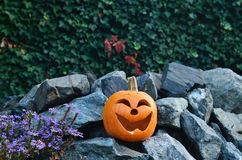 Χαμόγελο στους βράχους Στοκ εικόνες με δικαίωμα ελεύθερης χρήσης