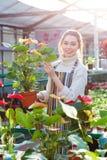 Χαμόγελο του δοχείου λουλουδιών εκμετάλλευσης κηπουρών γυναικών με τα anthuriums στο θερμοκήπιο πορτοκαλιών Στοκ φωτογραφία με δικαίωμα ελεύθερης χρήσης