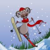 Χαμόγελο των μυγών προβάτων με τα χιονώδη βουνά στα σκι Στοκ φωτογραφίες με δικαίωμα ελεύθερης χρήσης