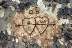 χαράζοντας δέντρο αγάπης Στοκ φωτογραφία με δικαίωμα ελεύθερης χρήσης
