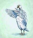 Χαράξτε το μελάνι σύρει την απομονωμένη απεικόνιση παπιών Στοκ φωτογραφία με δικαίωμα ελεύθερης χρήσης