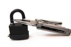 Χαραγμένες κλειδαριά πένσες Στοκ φωτογραφίες με δικαίωμα ελεύθερης χρήσης