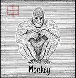 Χαραγμένη απεικόνιση zodiac του συμβόλου με τον πίθηκο και την εγγραφή Στοκ Εικόνα