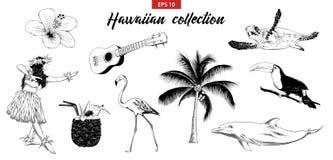 Χαραγμένη διάνυσμα απεικόνιση ύφους για το λογότυπο, το έμβλημα, την ετικέτα ή την αφίσα Συρμένο χέρι σύνολο σκίτσων της Χαβάης κ ελεύθερη απεικόνιση δικαιώματος