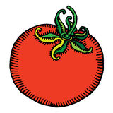 χαραγμένη κόκκινη ντομάτα Στοκ Φωτογραφία