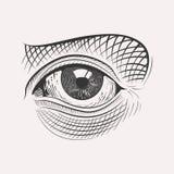 Χαραγμένο handdrawn μάτι Στοκ Εικόνα