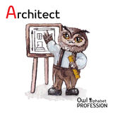 Χαρακτήρας αρχιτεκτόνων κουκουβαγιών επαγγελμάτων αλφάβητου στο α Στοκ Φωτογραφίες
