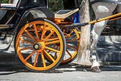 Χαρακτηριστικά ισπανικά άλογα αυτοκινήτων Στοκ φωτογραφία με δικαίωμα ελεύθερης χρήσης