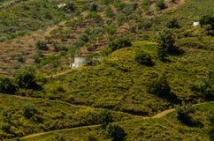 Χαρακτηριστικά ισπανικά του χωριού σπίτια και καλλιεργήσιμο έδαφος στους λόφους του anda Στοκ φωτογραφία με δικαίωμα ελεύθερης χρήσης