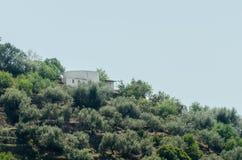 Χαρακτηριστικά ισπανικά του χωριού σπίτια και καλλιεργήσιμο έδαφος στους λόφους του anda Στοκ Εικόνες
