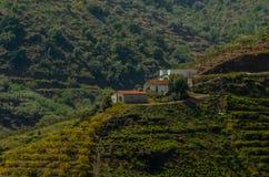 Χαρακτηριστικά ισπανικά του χωριού σπίτια και καλλιεργήσιμο έδαφος στους λόφους του anda Στοκ εικόνες με δικαίωμα ελεύθερης χρήσης