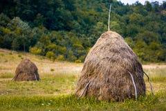 Χαρακτηριστικές ρουμανικές θυμωνιές χόρτου στοκ φωτογραφία