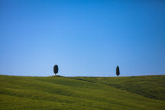 Χαρακτηριστική Tuscan άποψη Στοκ Φωτογραφία