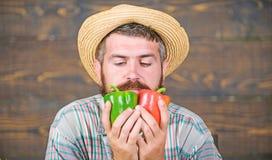 Χαρακτηριστικός τύπος αγροτών Φεστιβάλ συγκομιδών αγροτικής αγοράς Ξύλινο υπόβαθρο λαχανικών λαβής αγροτών ατόμων ώριμο γενειοφόρ στοκ εικόνα